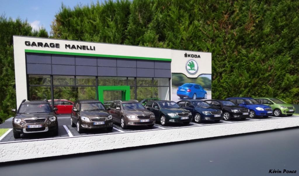 028-2014-07-CONCESSION SKODA MANELLI 2014-020