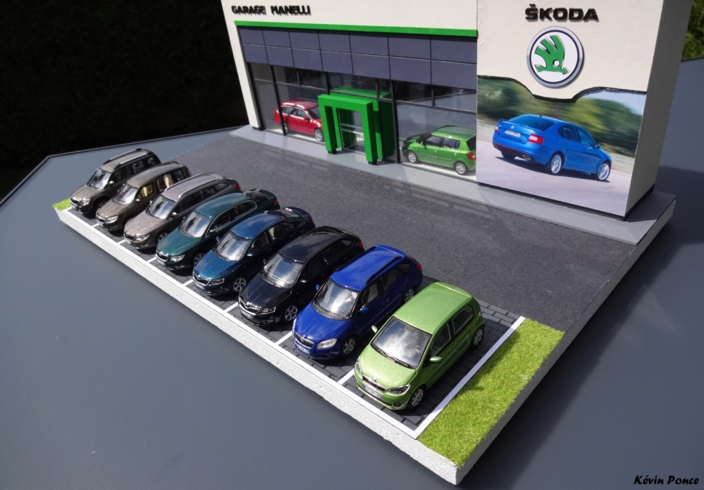 028-2014-07-CONCESSION SKODA MANELLI 2014-024