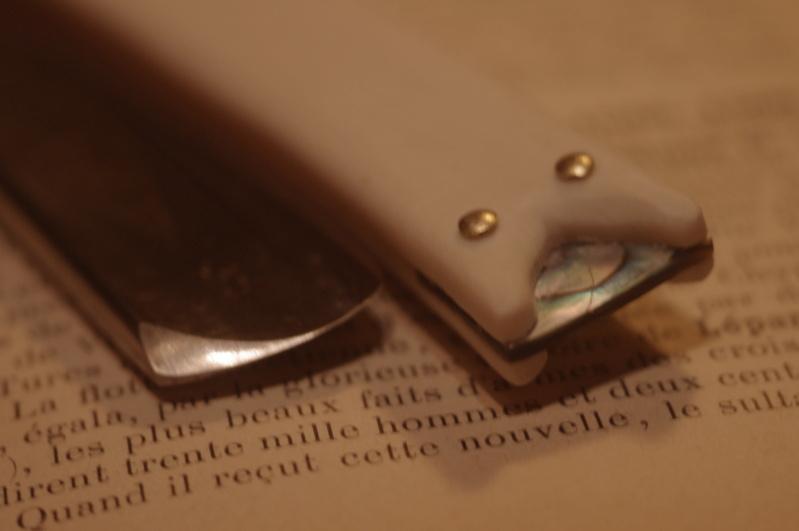 Chasses de Raminagrobis (ex : bois stabilisé) Imgp2319