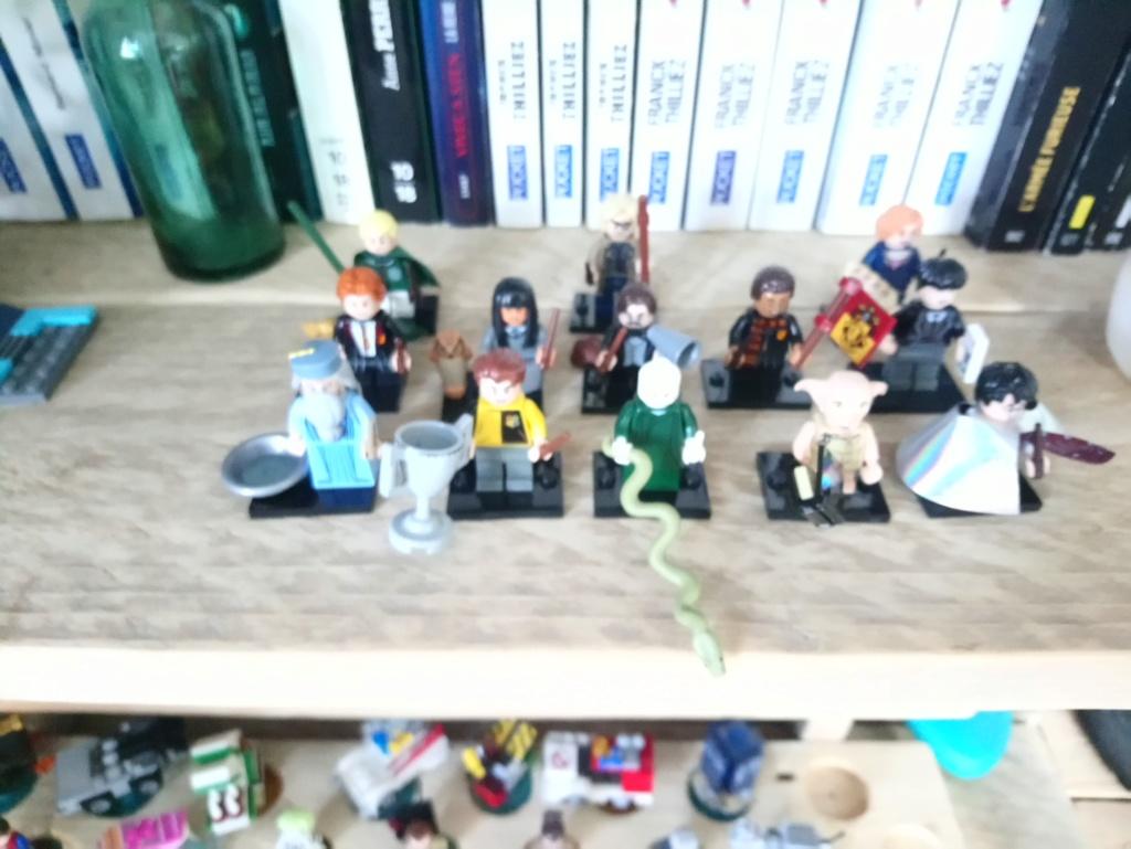 Jouets LEGO HP - Page 5 Dsc_0514