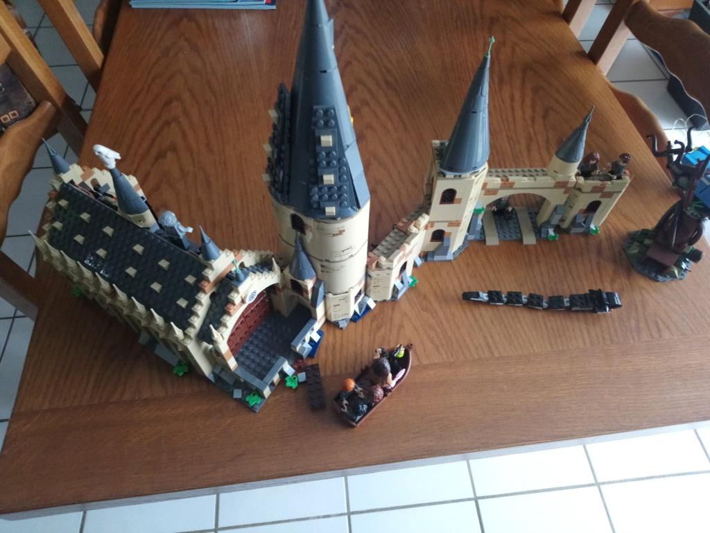 Jouets LEGO HP - Page 5 Dsc_0625