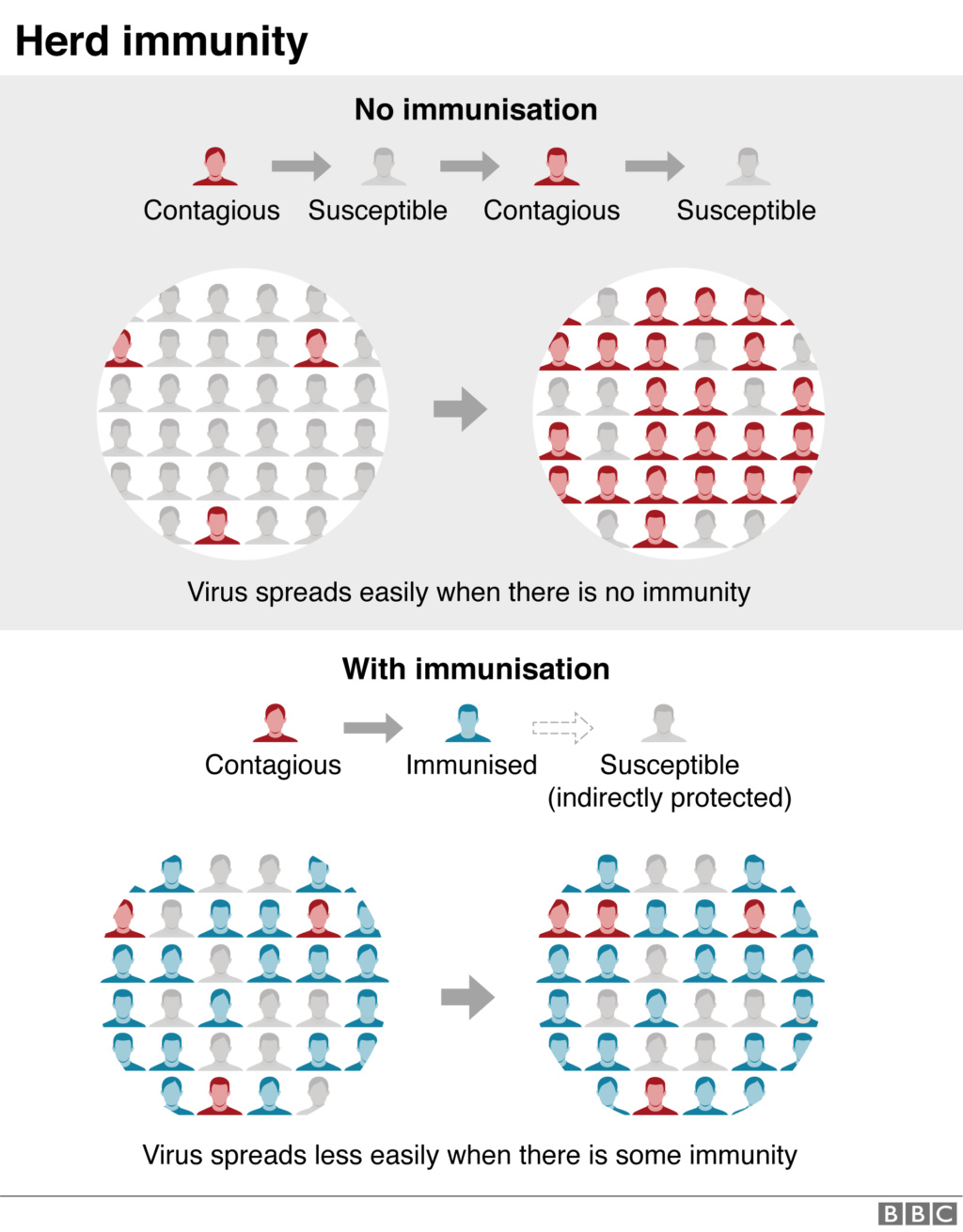 Coronavirus: Did 'herd immunity' change the course of the outbreak? _1134411