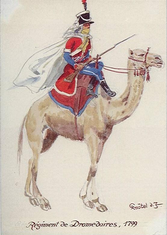 regiment des dromadaires, rpmodels Dromed10