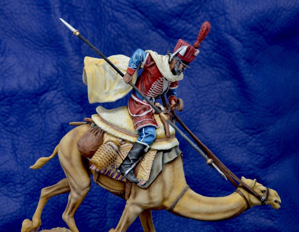 regiment des dromadaires, rpmodels Dsc_0225