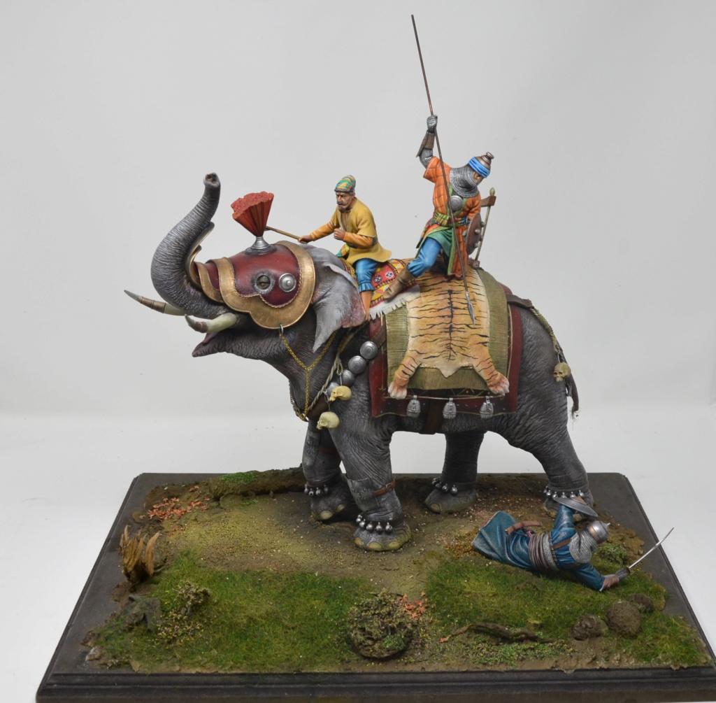 elephant de guerre indien 16th verlinden 120 mm - Page 2 Dsc_1510