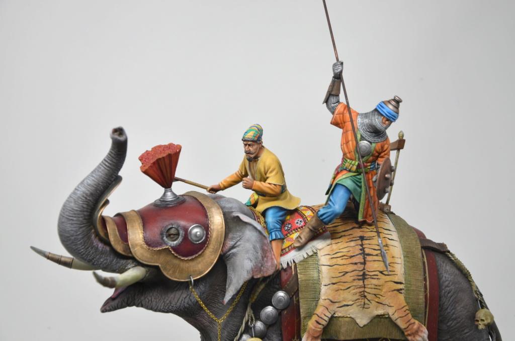 elephant de guerre indien 16th verlinden 120 mm - Page 2 Dsc_1511