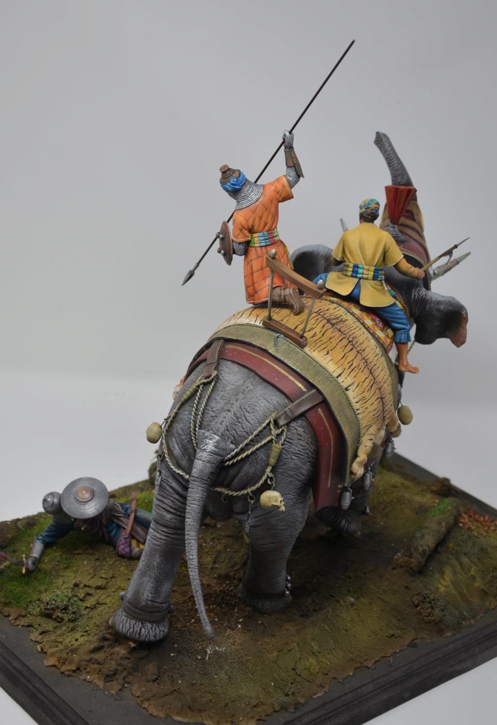 elephant de guerre indien 16th verlinden 120 mm - Page 2 Dsc_1515