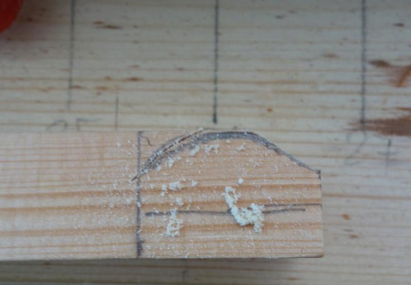 Havhingsten fra Glendalough - Seite 4 Dsc01532