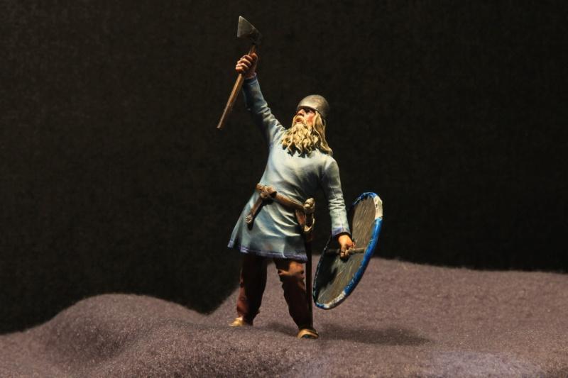 Viking Raider Img_1610
