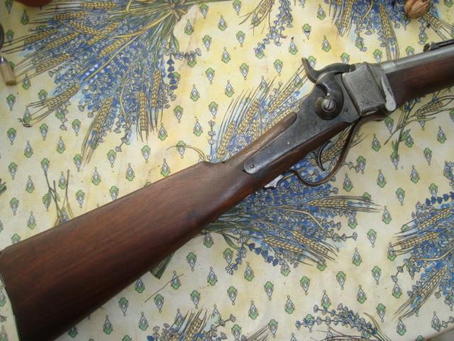 Sharps carbine Dsc01912