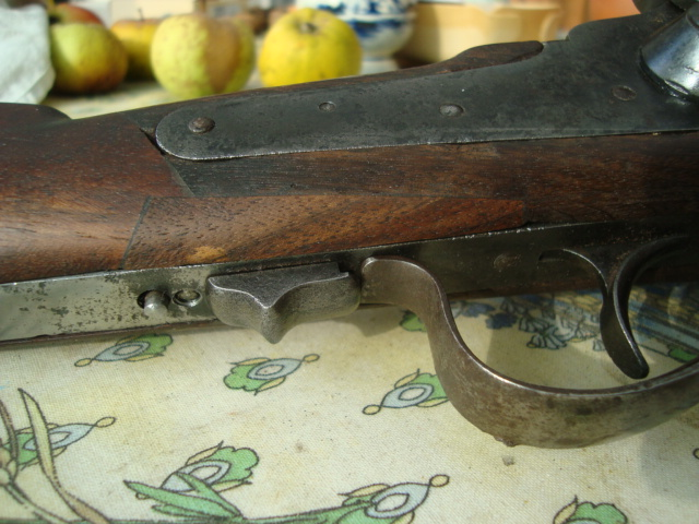 Sharps carbine Dsc01916