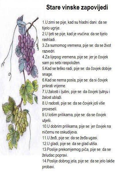 ALTERNATIVNA MEDICINA Vinska10