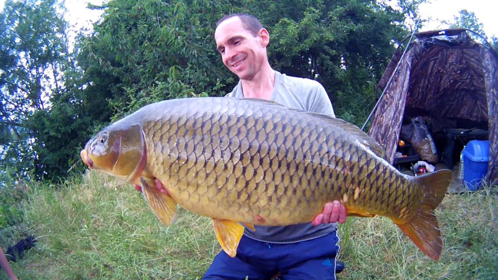 Première sortie sur le grands rhône et premires fishs 15kg10