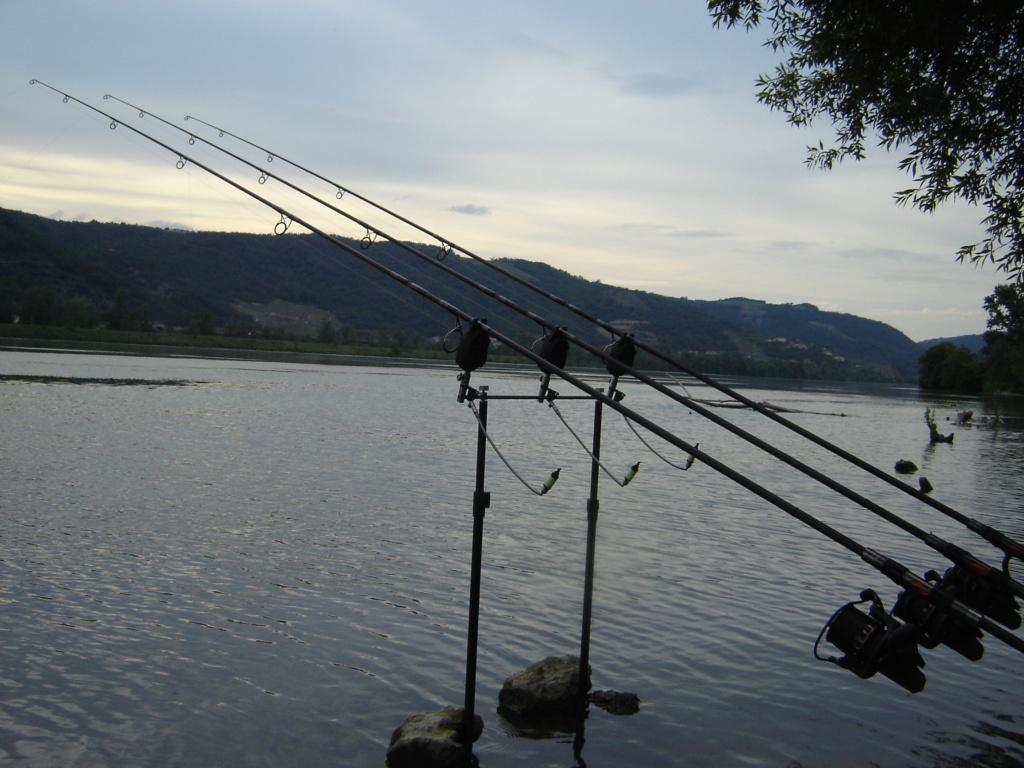 Première sortie sur le grands rhône et premires fishs Dsc00014