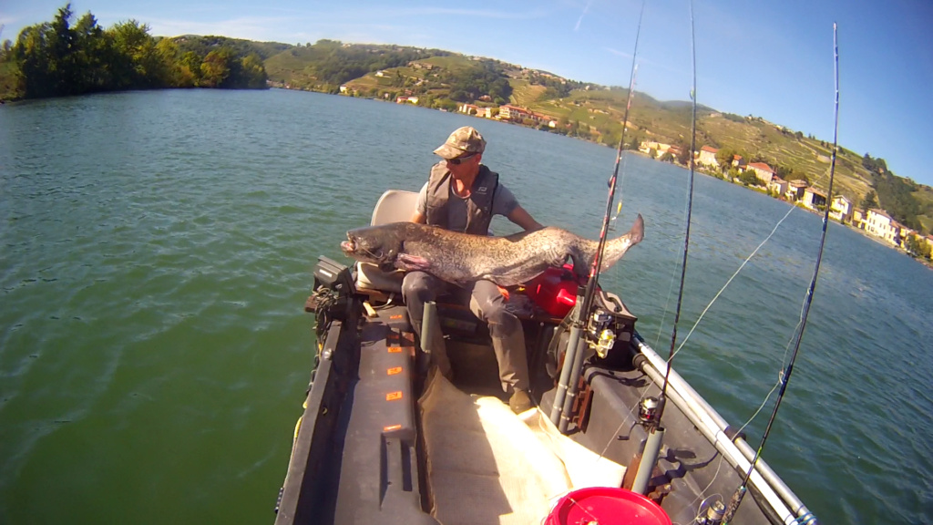 De retour à la pêche. Vlcsna32