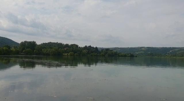 Première sortie sur le grands rhône et premires fishs Vlcsna43
