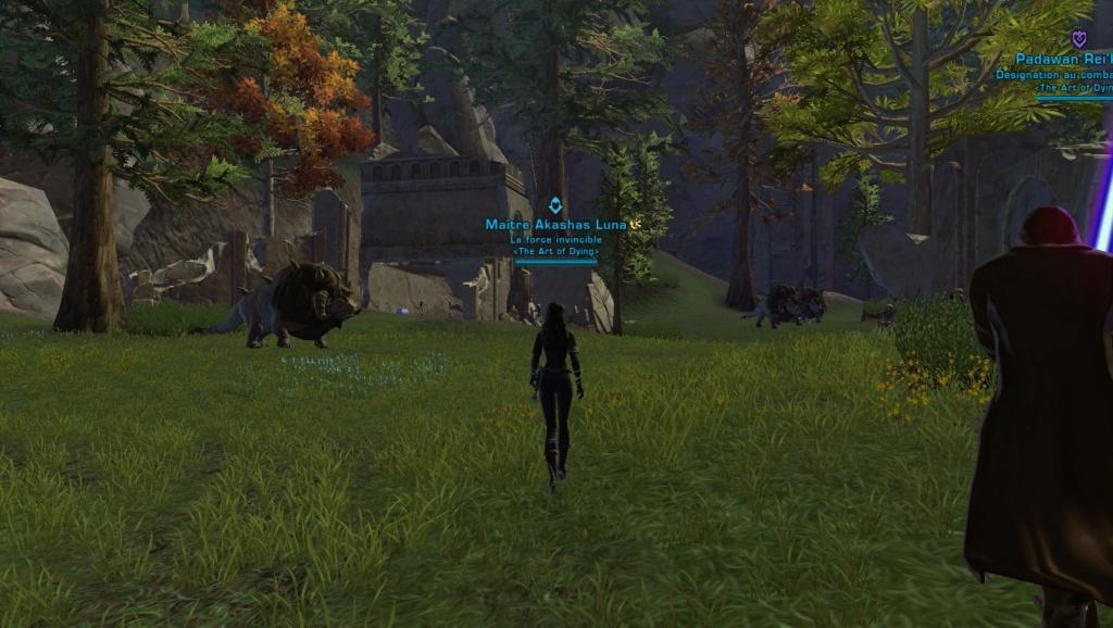 Les ruines de Kaleth Screen14