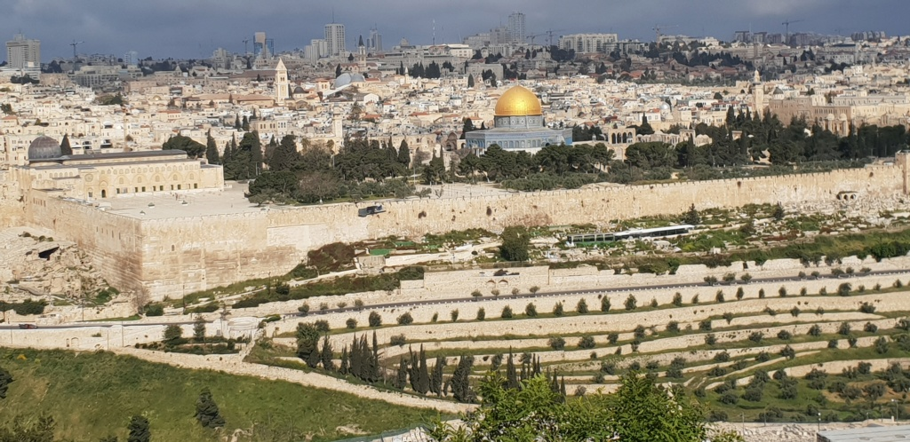 Périple historique et géographique en Israël : les photos  20190423