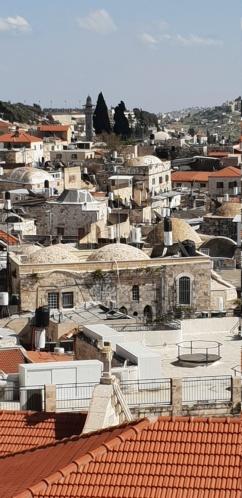 Périple historique et géographique en Israël : les photos  20190430