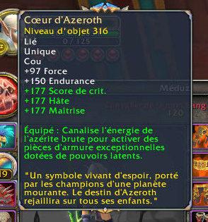 Le Coeur d'Azéroth Wowscr14