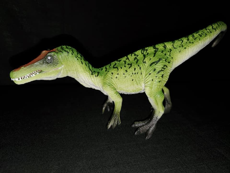 Takamas Mojo Dinosaurs Bary_111