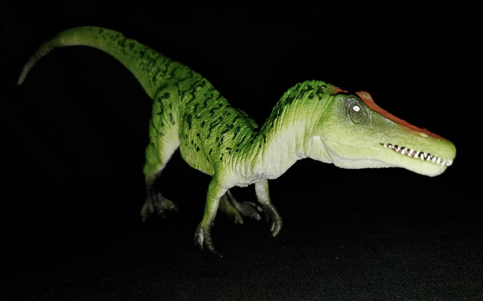 Takamas Mojo Dinosaurs Bary_211
