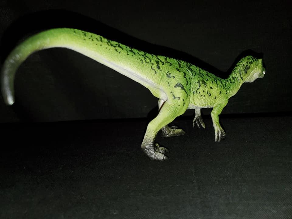 Takamas Mojo Dinosaurs Bary_311