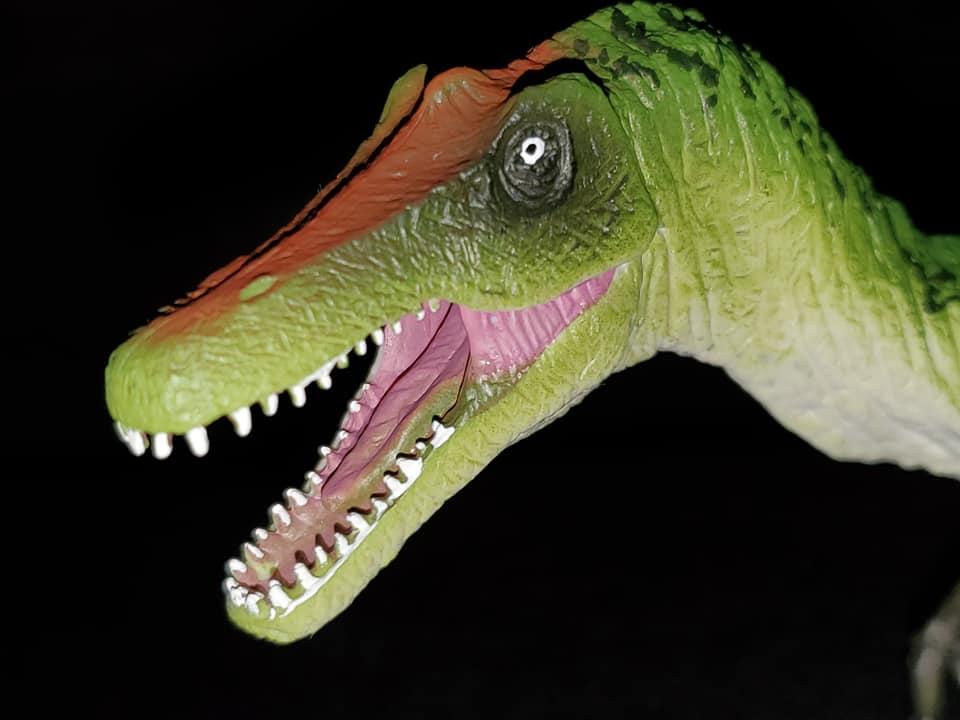 Takamas Mojo Dinosaurs Bary_511