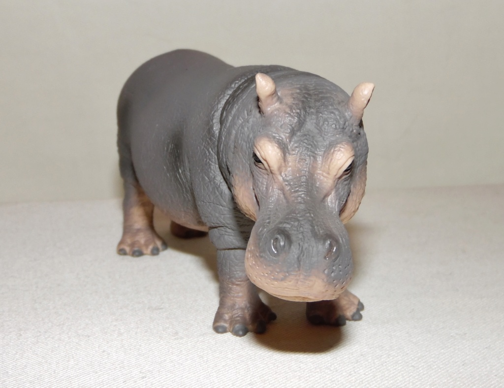 Rebooted Schleich Wildlife Collection(2015-present) Sam_8232