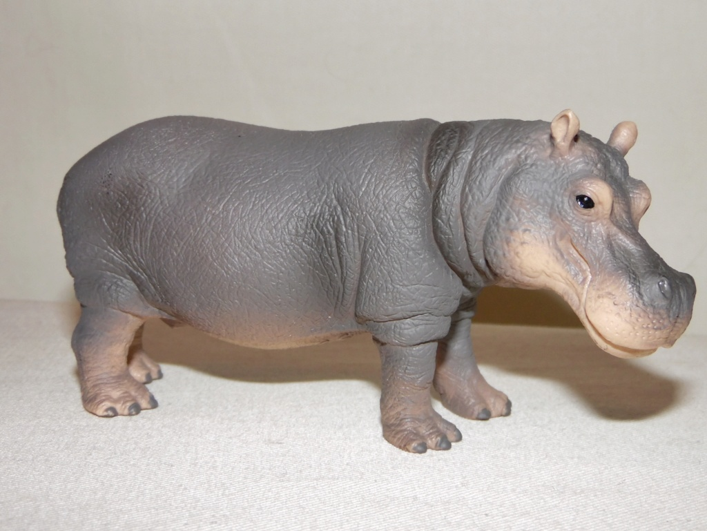 Rebooted Schleich Wildlife Collection(2015-present) Sam_8234