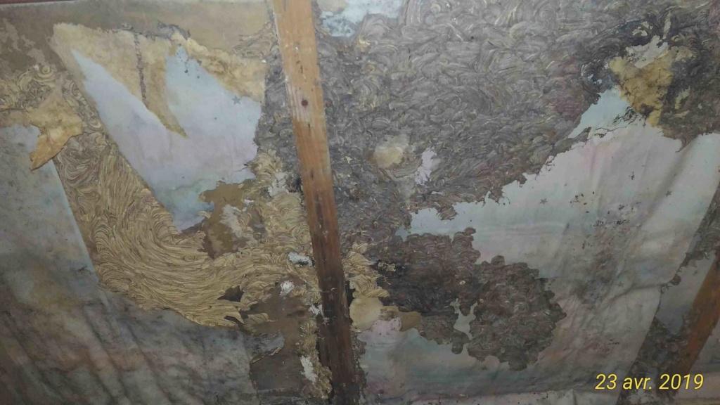 Gros dégâts sur rampant en lambris chambre à coucher _3_tra12