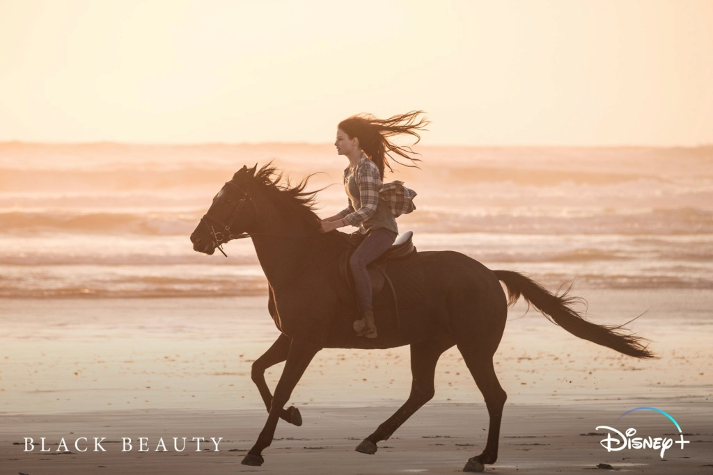 Black Beauty [Disney - 2020] 12180210