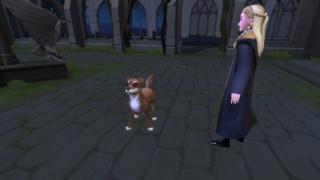 [Jeu Mobile] Harry Potter : Hogwarts Mystery - Page 4 Screen10
