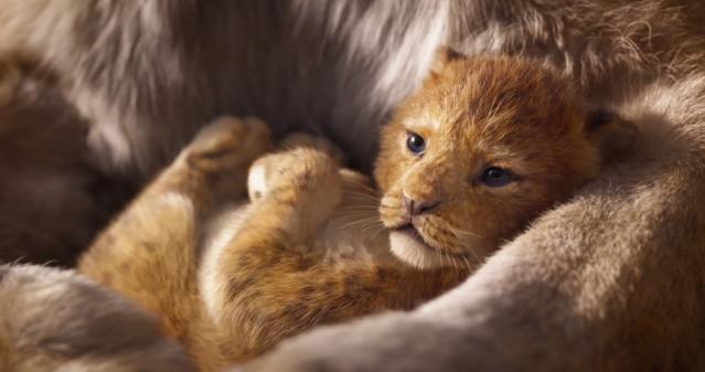 Le Roi Lion [Disney - 2019] - Page 13 Vlcsna53