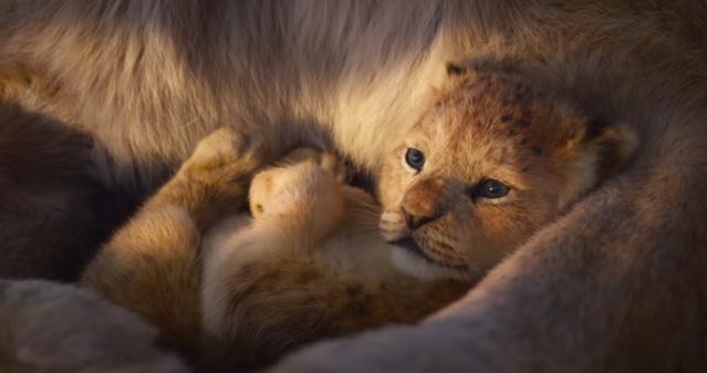 Le Roi Lion [Disney - 2019] - Page 13 Vlcsna54