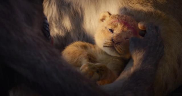 Le Roi Lion [Disney - 2019] - Page 13 Vlcsna59