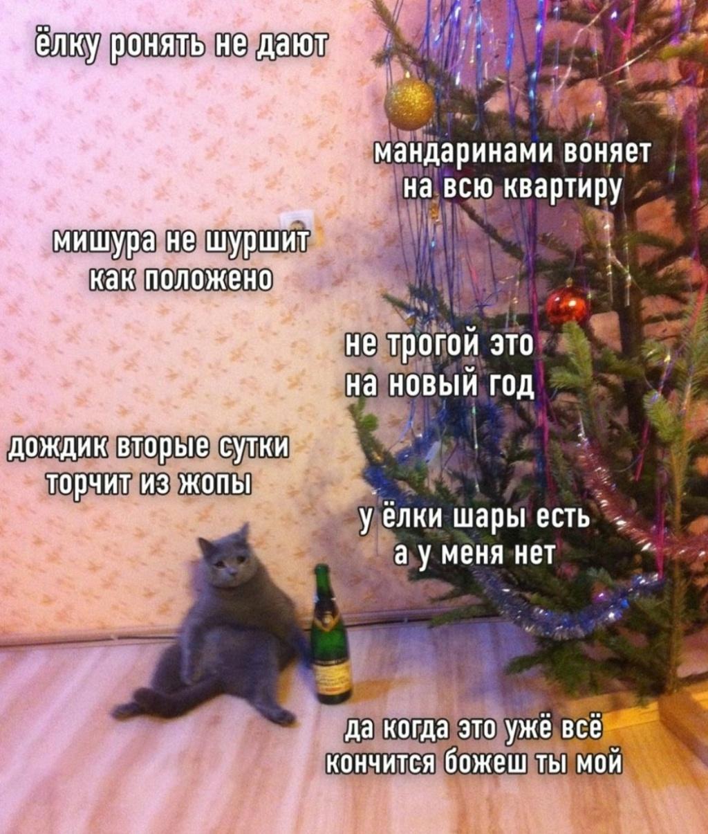 Ёлки -палки , и просто празднично-настроенческая  :) Eplmhf10