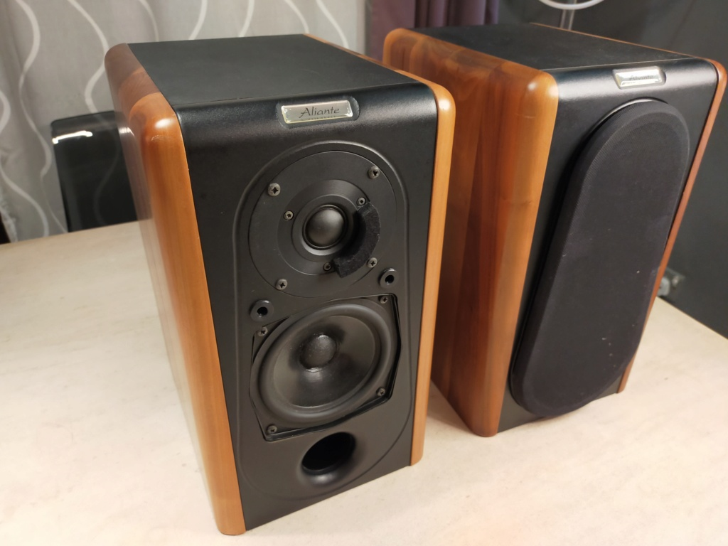 Aliante Bookshelf Speakers (with solid walnut finished)  Img20214