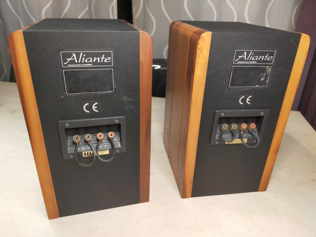 Aliante Bookshelf Speakers (with solid walnut finished)  Img20215