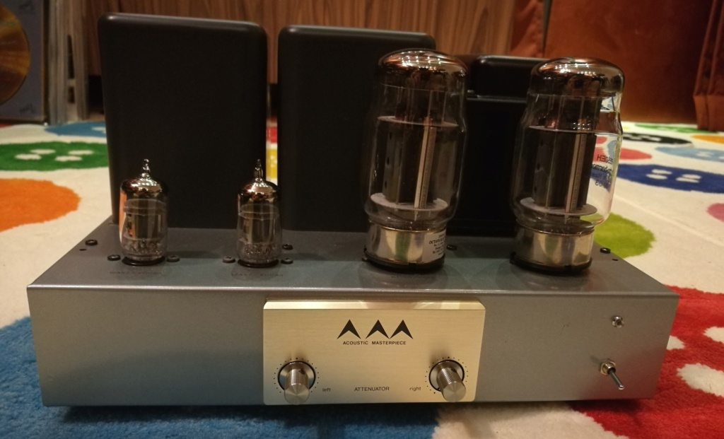 Acoustic Masterpiece AirTight M-101 Amplifier Img_2058