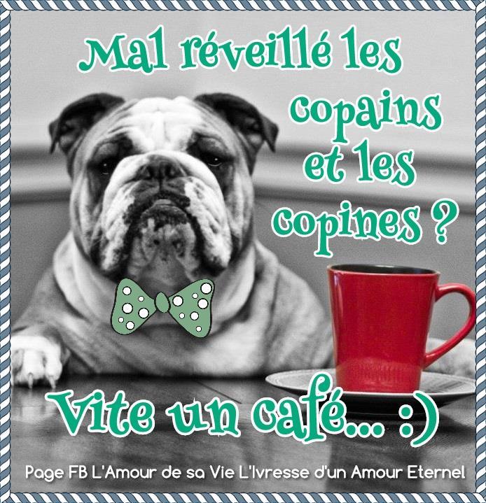 Mercredi 13 mars Cafe_010