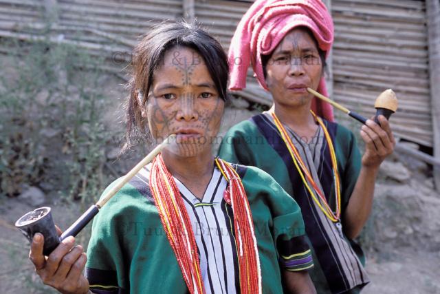 les pipeux tatoué  Birman10