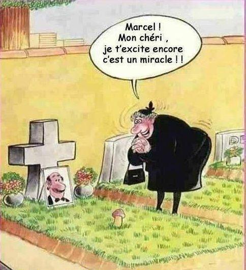 Mort de rire — parce que j'ai le sens de l'humour ! - Page 11 Fca5f310