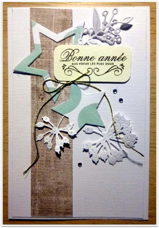 """***Sunny'  S """"Oies de Noël"""" ! *** MAJ 18/11 10h42 TERMINE*** P1060695"""