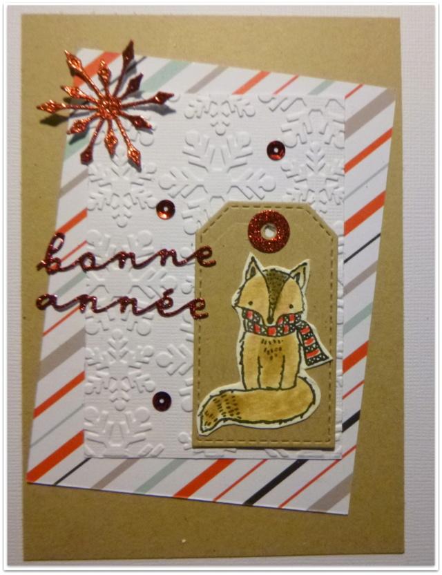 """***Sunny'  S """"Oies de Noël"""" ! *** MAJ 18/11 10h42 TERMINE*** P1060699"""
