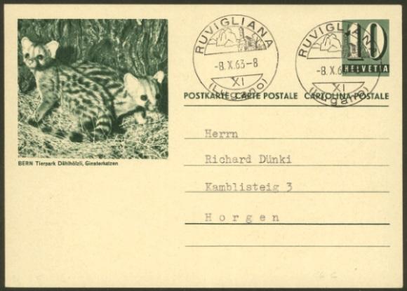 Tiere auf Bildpostkarten der Schweiz Zu_19316