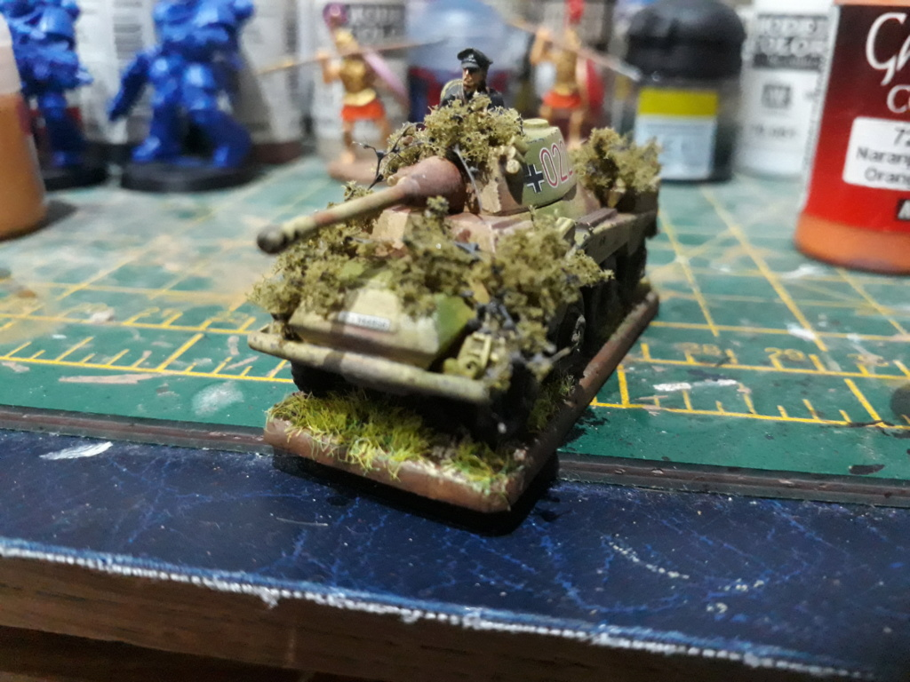 WIP Panthers - have they gone horribly wrong? My_pum10