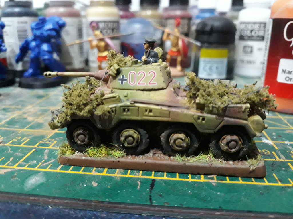 WIP Panthers - have they gone horribly wrong? My_pum11