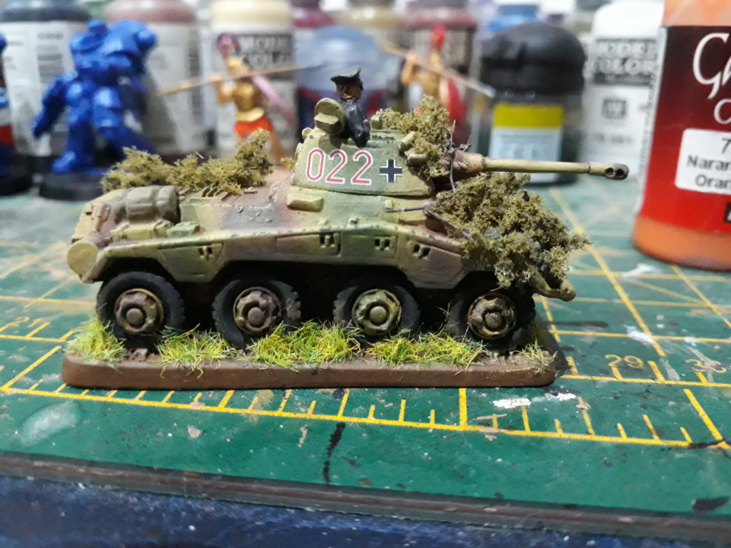 WIP Panthers - have they gone horribly wrong? My_pum12