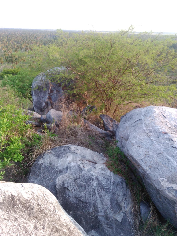 ayuda con señas labradas en piedra Img_2010
